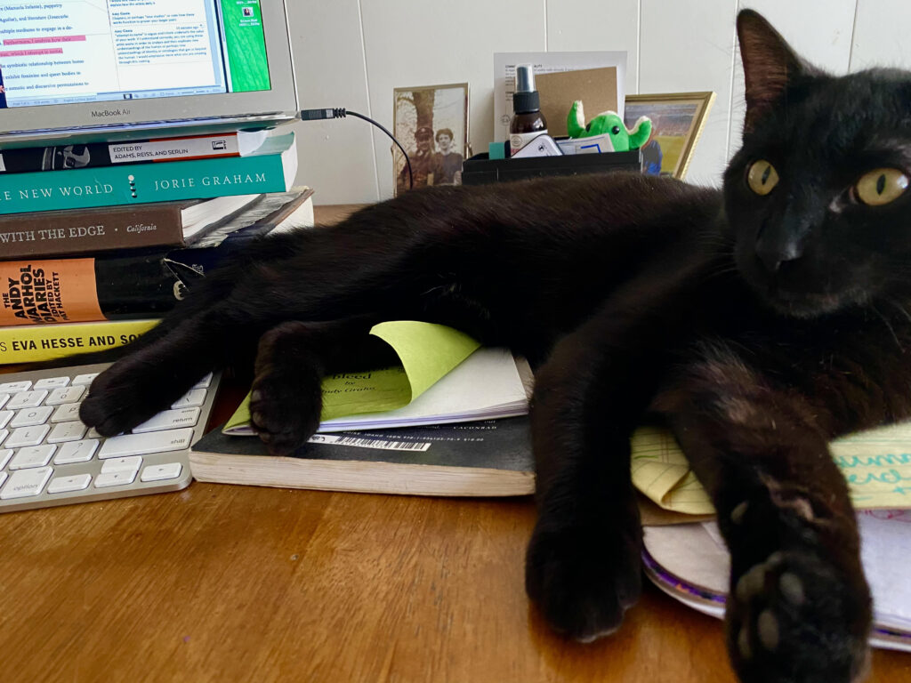 image shows a black cat lounging on a stack of papers and a laptop keyboard
