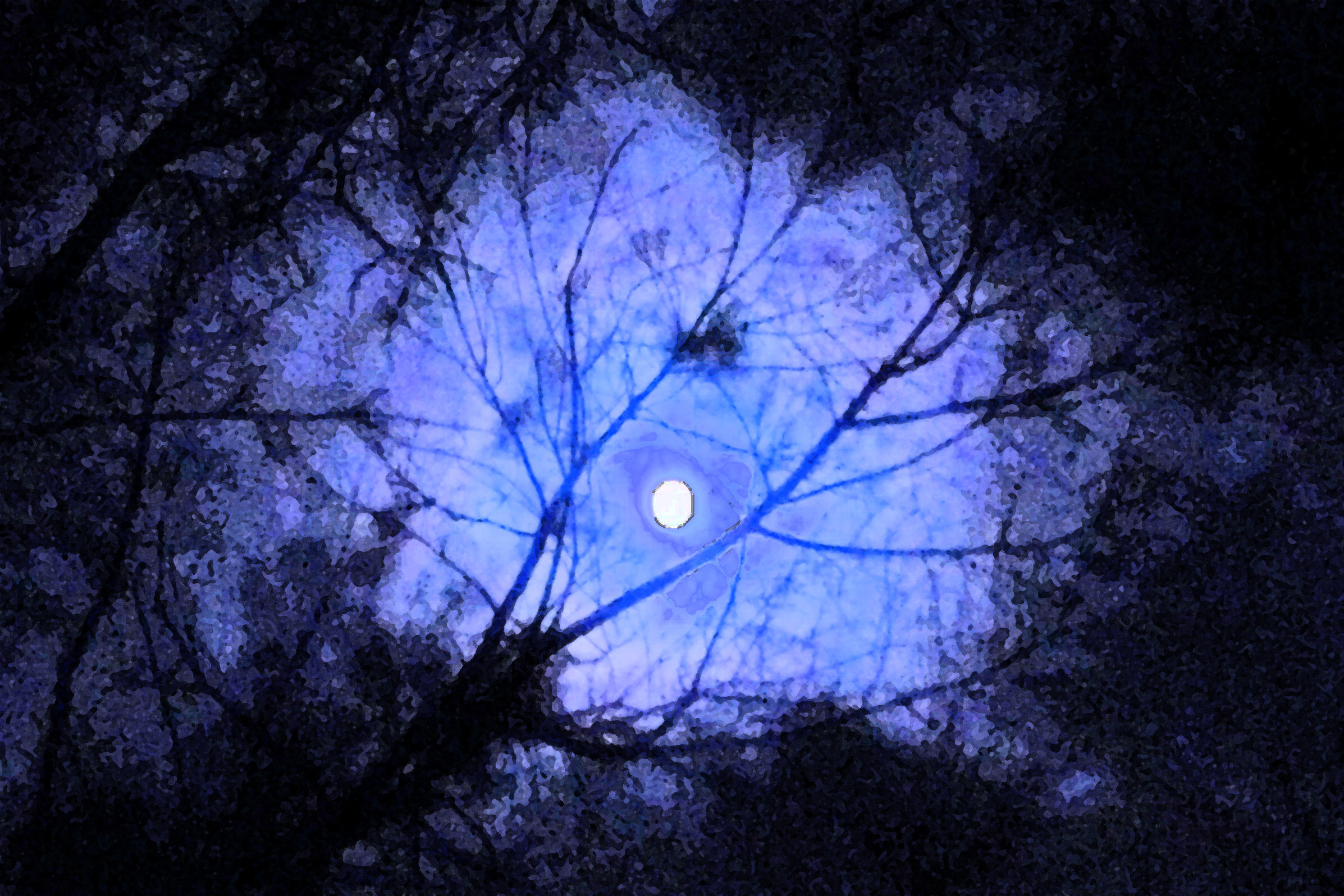 Dark sky with moon