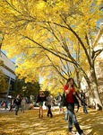 Autumn on Library Mall, UW-Madison